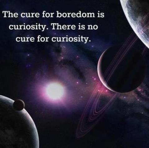 thecureforboredom
