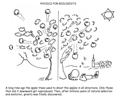 physics_for_biologists