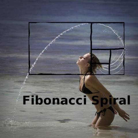 fibonacispiral