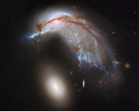 porpoise galaxy