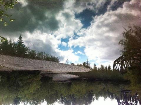 upsidedownpic