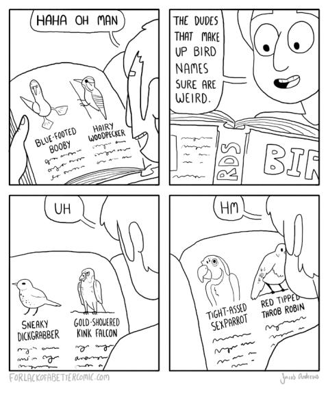 birdnames