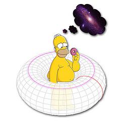 doughnut shaped universe