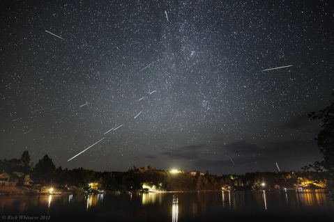 perseids_gall