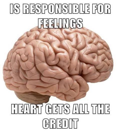 responsiblefeelings
