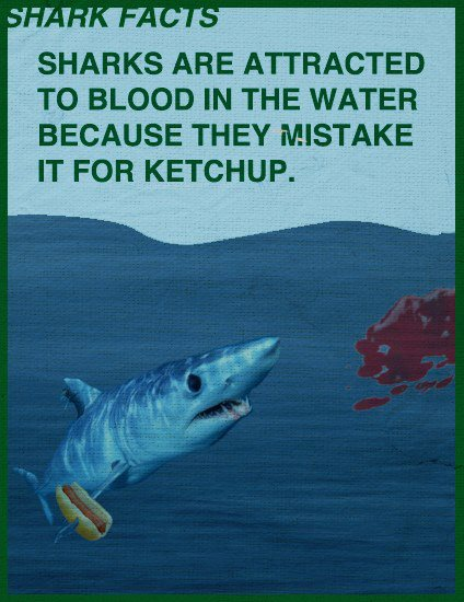 shark fact-blood-ketchup