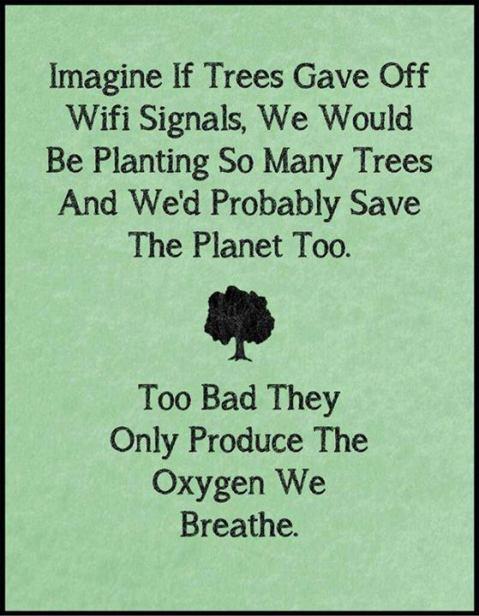 trees wifi