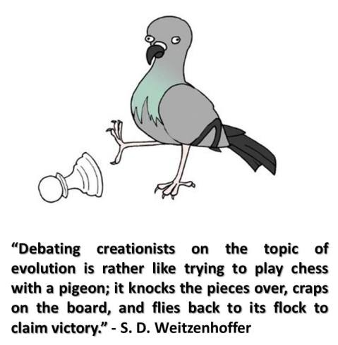 creationists-pidgeon