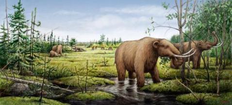 prehistoricc