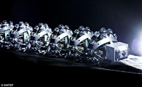 roboticsnakes